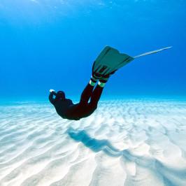 One Ocean One Breath