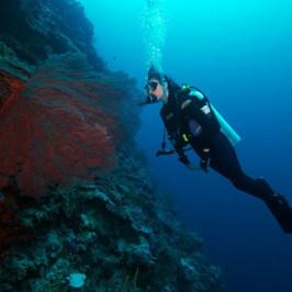 Drift Diver