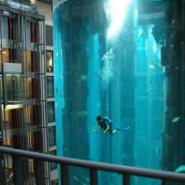 Hotel Dive