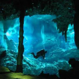 Environmental Divers
