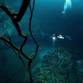 The River Under The Sea